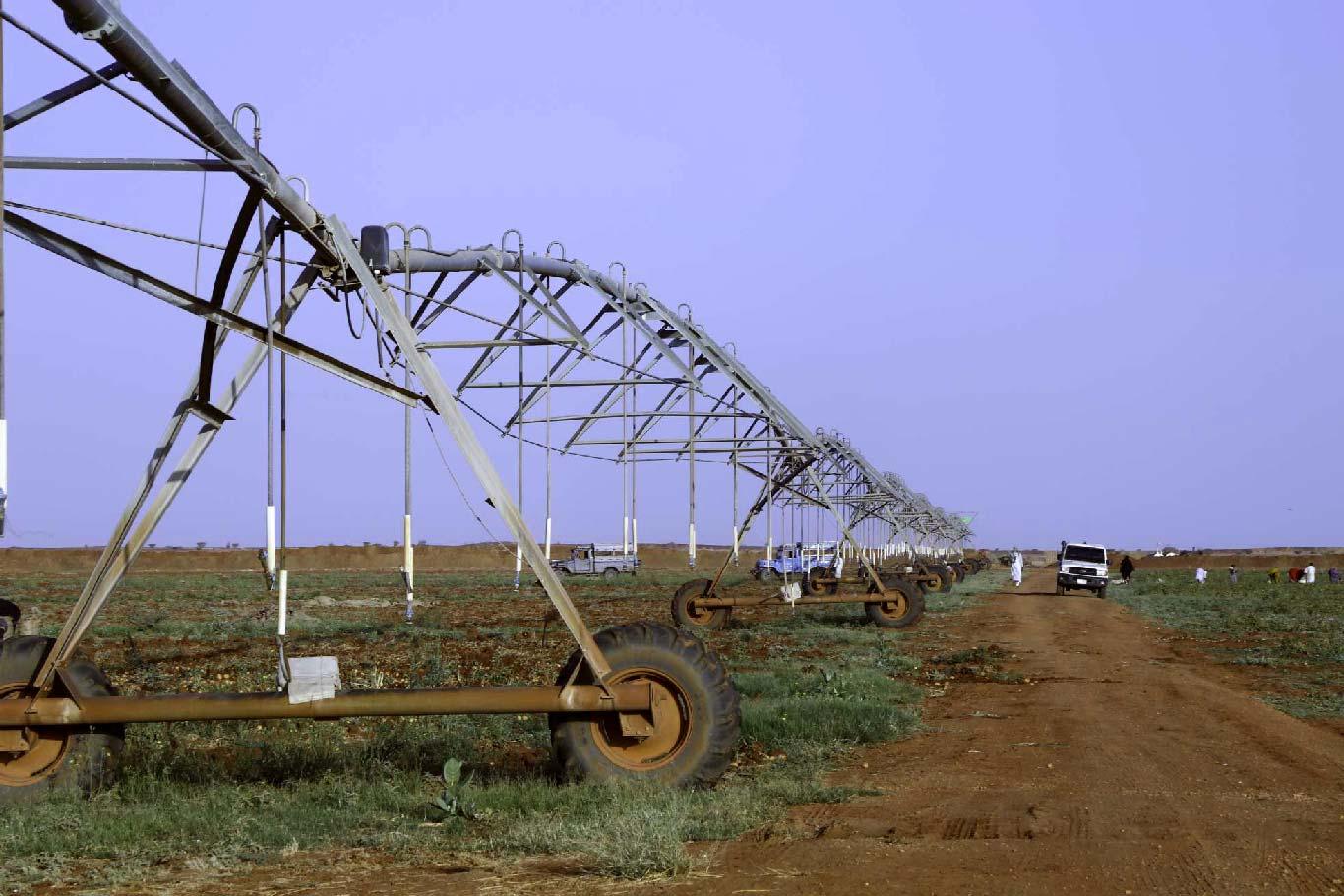 نظام الري المحوري بمشروع القمة الزراعي بالسوداني